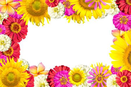ミックスの花のフレーム
