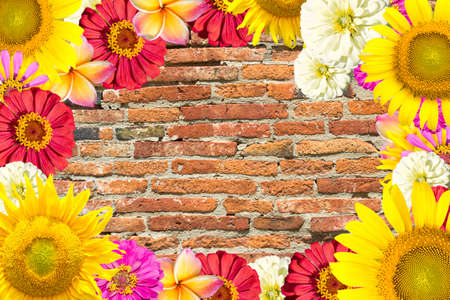 mix flowers frame