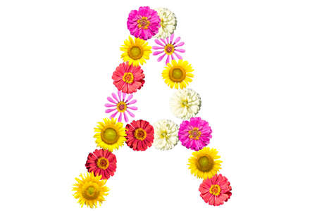 Letter A - flower isolated on white background, font