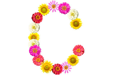 Letter C - flower isolated on white background, font Stock Photo