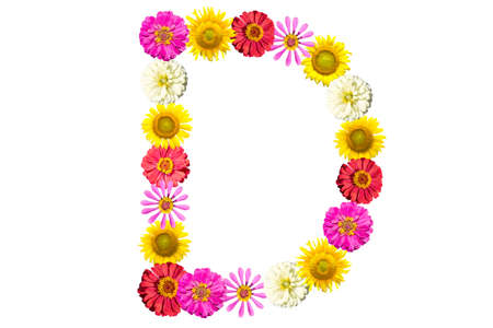 Letter D - flower isolated on white background, font Stock Photo