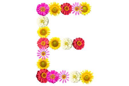 Letter E - flower isolated on white background, font Stock Photo