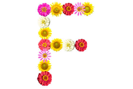 Letter F- flower isolated on white background, font