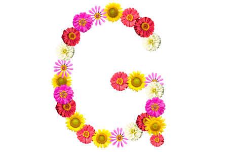 Letter G - flower isolated on white background, font Stock Photo