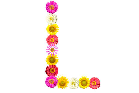 Letter L - flower isolated on white background, font Stock Photo