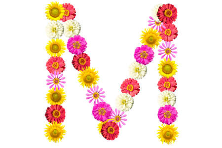 Letter M - flower isolated on white background, font Stock Photo