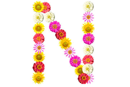 Letter N - flower isolated on white background, font Stock Photo