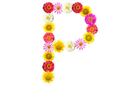 Letter P - flower isolated on white background, font photo