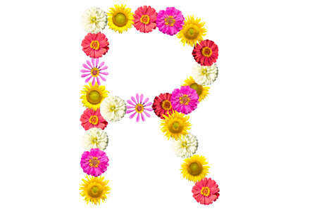 Letter R - flower isolated on white background, font