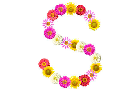 Letter S - flower isolated on white background, font Stock Photo