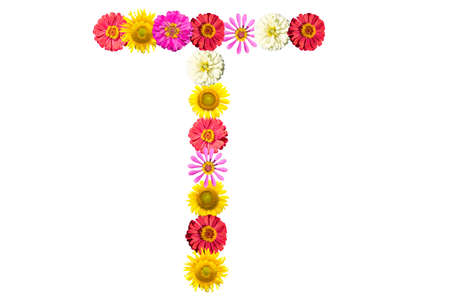 Letter T - flower isolated on white background, font