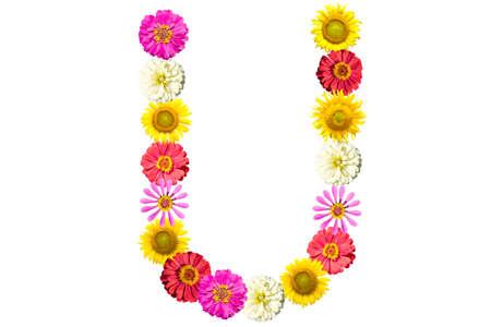Letter U - flower isolated on white background, font