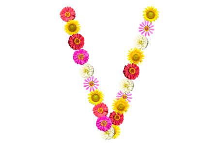 Letter V - flower isolated on white background, font Stock Photo