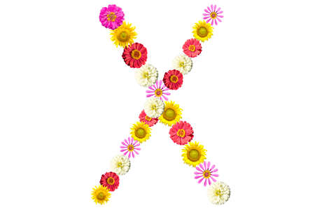 Letter X - flower isolated on white background, font
