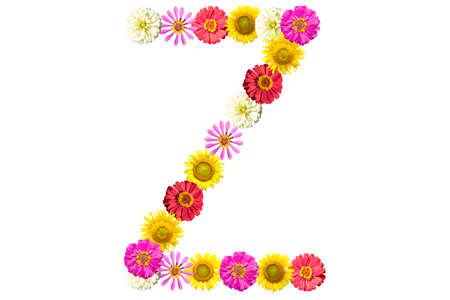 Letter Z - flower isolated on white background, font Stock Photo