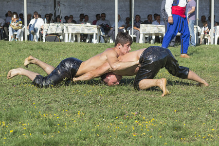 wrestlers: HILIA EVROS, GREECE - AUGUST 18 Unidentified wrestlers in the Annual Oil Wrestling Event in HILIA-EVROS on August 18, 2013 in Hilia Evros, Greece