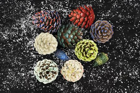 pinecones: Pinecones painted with different paints, isolated on black background