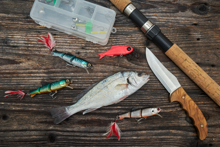spinning reel: Spinning rod, reel and fishing baits isolated on wooden background, top view