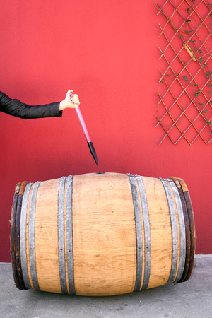 Winemaker getting sample of red wine from barrel  Stock Photo