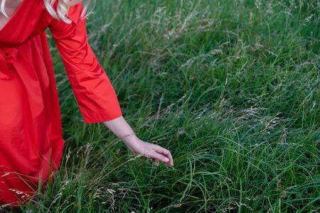 Woman's hand touching the grass at the field Фото со стока - 129025830