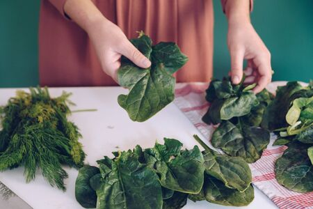Woman holding spinach leaves