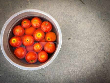 Fresh red tomatoes in silver vessel are immersed in water. Grey background