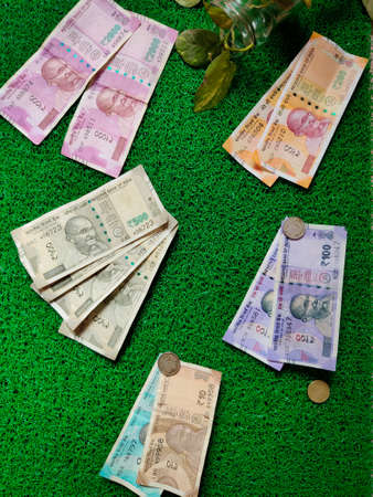 Two nos of 2000,200,100. Four nos of 500. One nos of 50,10. And three coins of Indian rupees note. Isolated on green background with money plant.Daylight. Topview