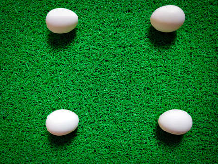 Four uncooked eggs are placed in square shape. Isolated on green background. Daylight