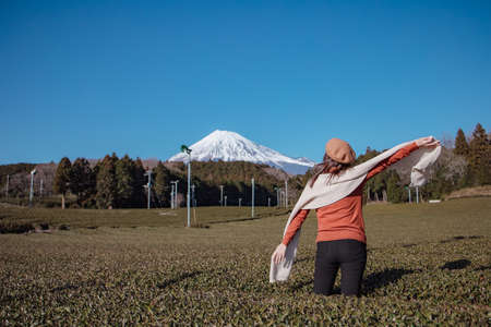 Pretty woman standing in the middle of the tea tree with Fuji Mountian view in Fujinomiya, Shizuoka. Shizuoka is one of the best natural on Tea in the world. 免版税图像 - 156726557