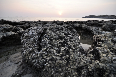rayong: Rayong Seaside