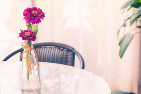 beautiful magenta flowers in glass vase on table. Valentine gift concept.