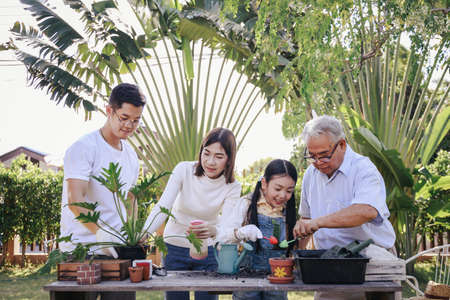Asian parent, pretty daughter, and grandpa helping planting together for planting trees at home garden. Happy and enjoy the family outdoor activity on holiday.