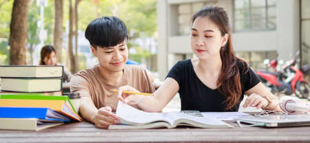 A happy group of attractive young people is tutoring exams with study books, sitting on the study table. Student group and tutoring education concept. banner size Stockfoto