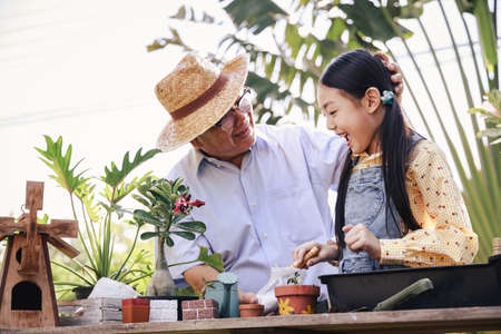 Asian retirement grandfather and pretty granddaughter helping planting together for planting trees at home garden. Happy and enjoy family outdoor activity in holiday. Stockfoto