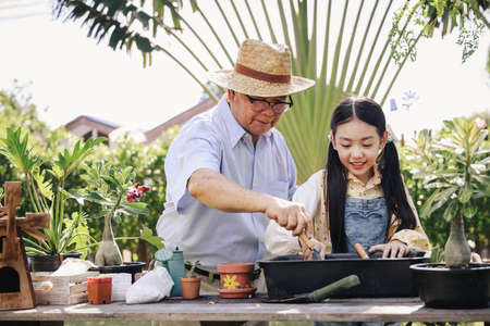 Asian retirement grandfather and pretty granddaughter helping prepare planting soil together for planting trees at home garden. Happy and enjoy family outdoor activity in holiday.