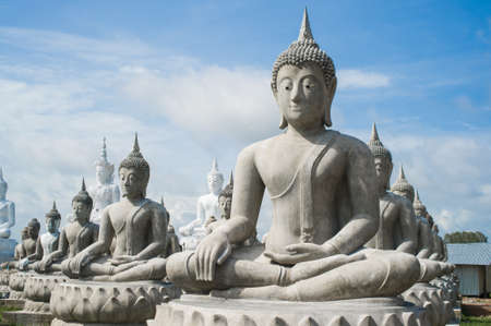 lot of buddha statue photo