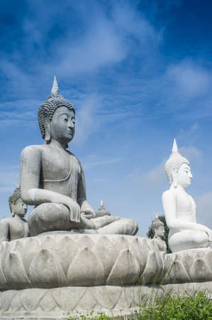 lot of buddha statue in Thailand photo