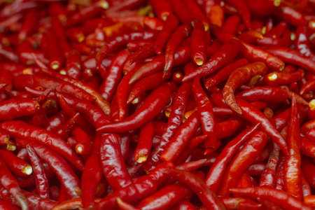 Lots of red chili on street market photo