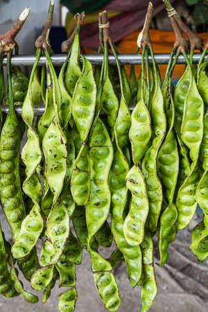 Petai - Pungent Green Bean from Malaysia Stock Photo - 15772320
