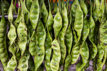 pungent:  Petai - Pungent Green Bean from Malaysia