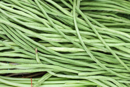 Yardlong beans in market Thailand