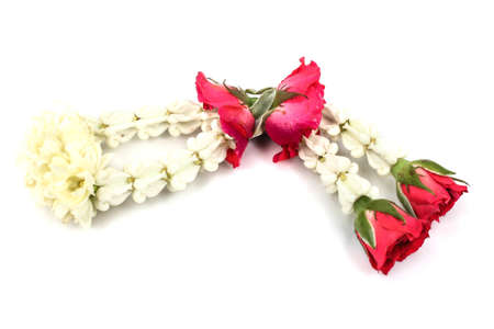 Thai Jusmine garland in white background photo
