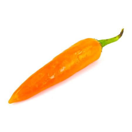 orange chili on white background