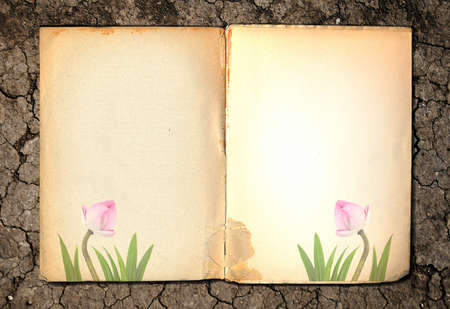 old notebook on soil background photo