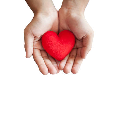 heart doctor: hands hold a red heart on white background