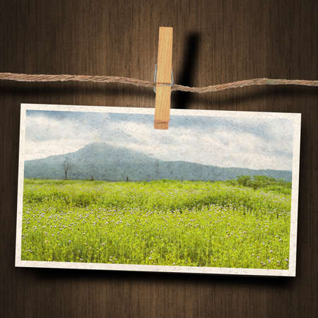 instant film transfer: old photo and clothes peg wood background