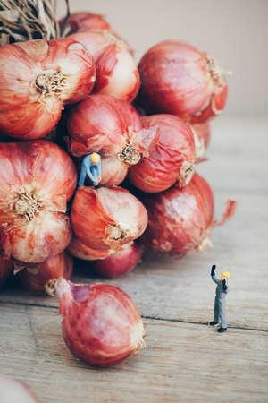 mini farm: miniature people : worker working with onion Stock Photo