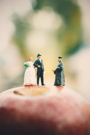 minature: mniature people : groom and bride wedding on the apple Stock Photo