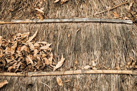 unpressed: dry leaf background with warm tone