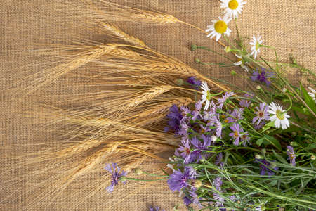 Colorful bouquet of wildflowers- blue cornflowers, daisies and rye 스톡 콘텐츠